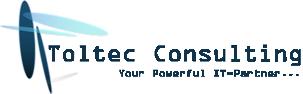 Toltec Consulting Logo
