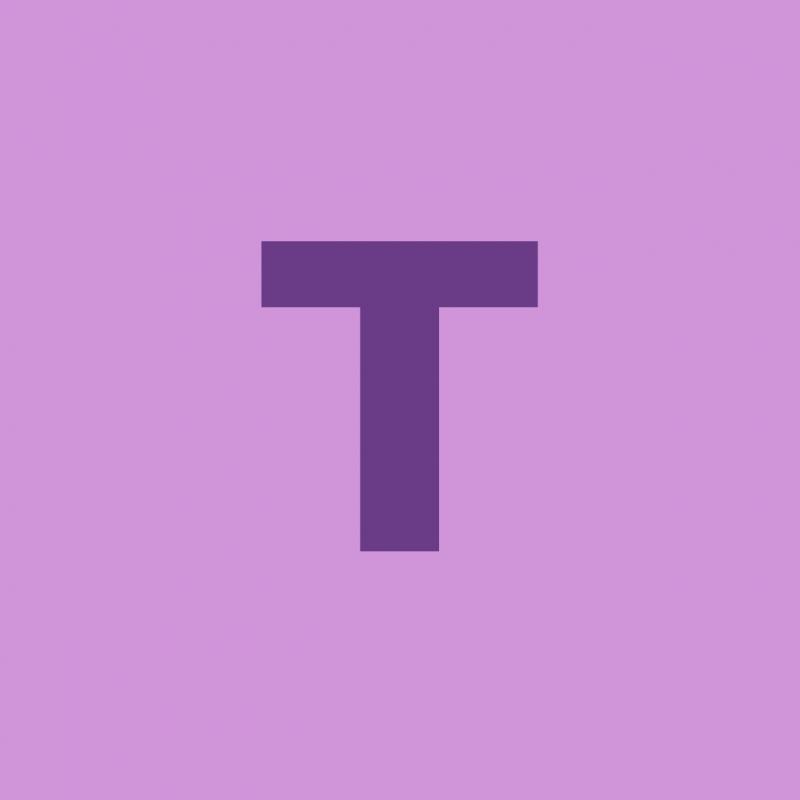 Twingo SARL Logo