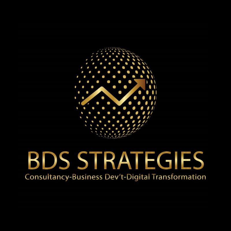 BDS Strategies Sarl Logo